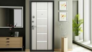 Квартирные двери по реновации