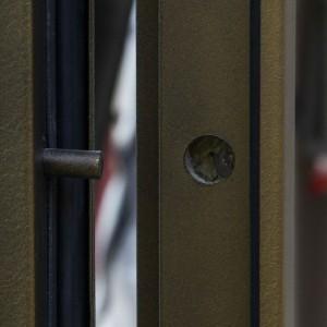 Противосъемочные штыри двери ДПМ-1